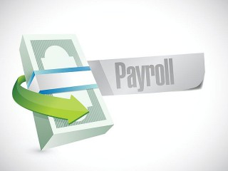Payroll Services for dutch based companies