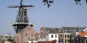 Haarlem tax advisor